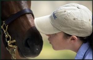 Kiss-a-horse